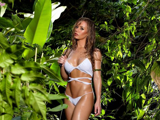 Wallpaper forest, sexy, model, erotic, girl, bikini, tan, wet, nicole aniston, oiled, woman in the woods