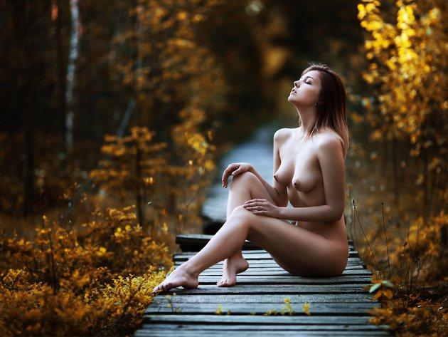 Wallpaper forest, autumn, model, girl, breast, the bridge