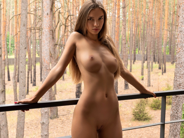 Wallpaper forest, model, alina, brunette, tits, girl, breast, pussy, naked, tan, beauty, long hairs