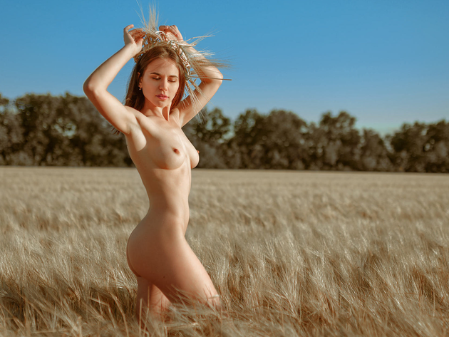 Wallpaper sexy, brunette, field, tits, erotic, girl, breast, wheat, naked,